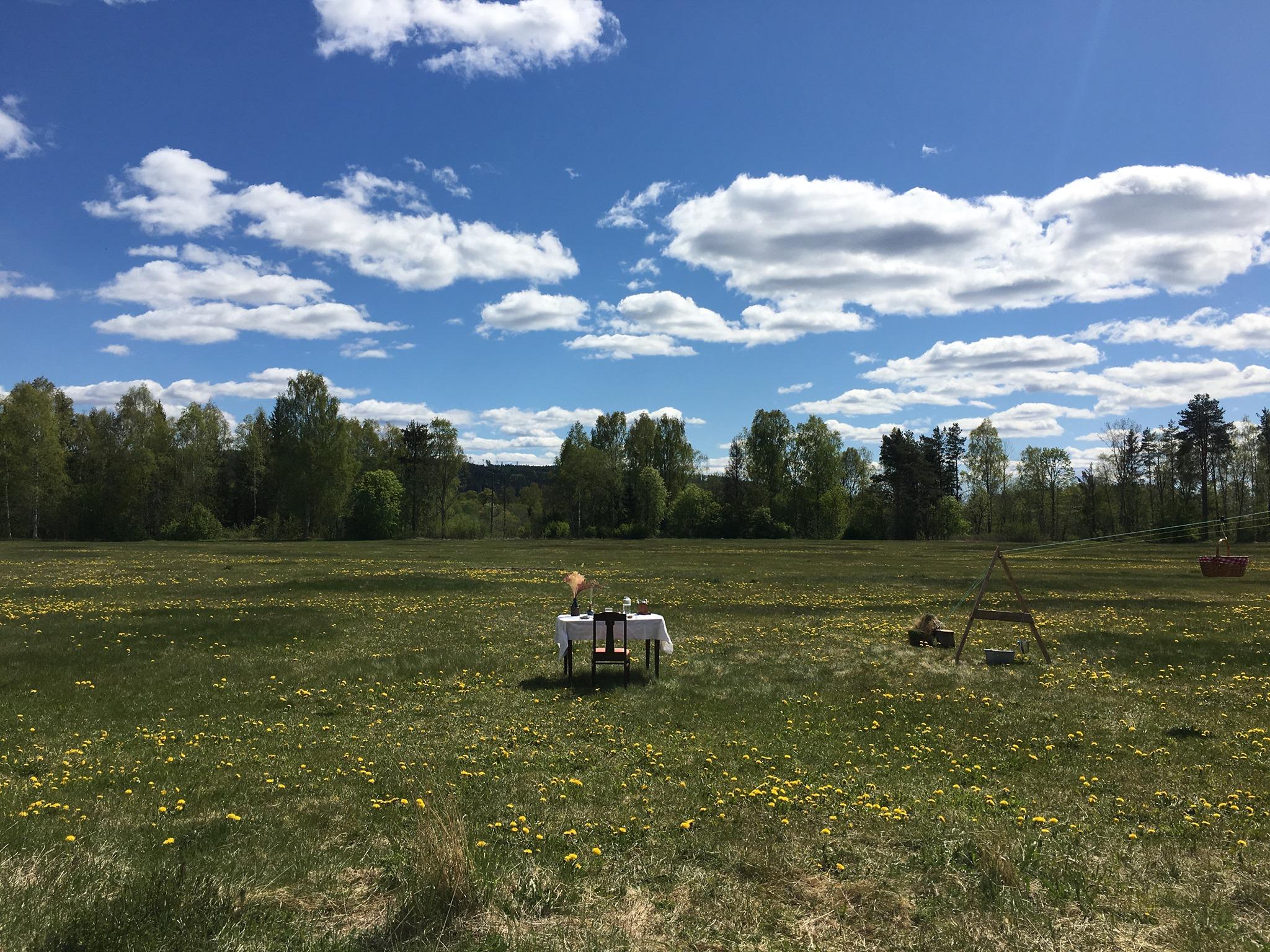Φαίνεται πως ο αγρός είχε ακόμη το πράσινο της άνοιξης στο «τραπέζι για έναν» στη Σουηδία