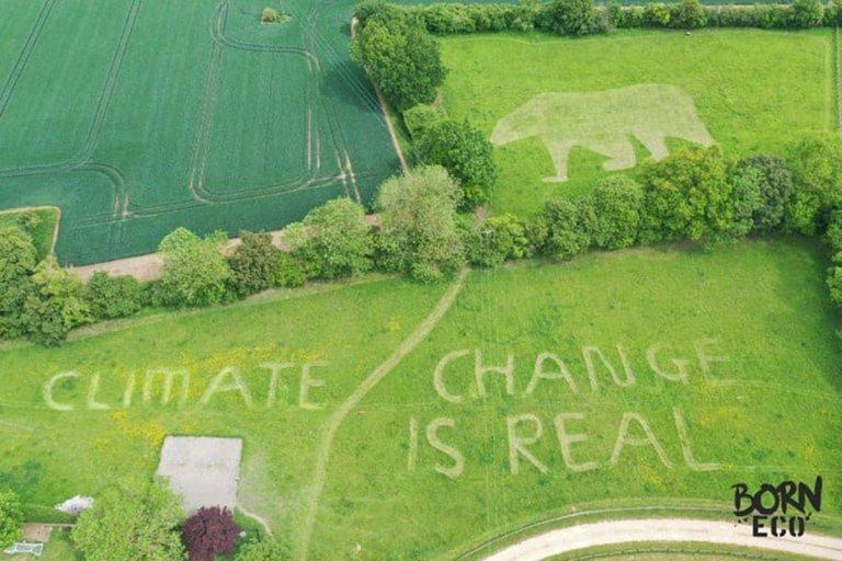 O φοιτητής σχημάτισε και την εικόνα μιας πολικής αρκούδας σ' ένα γειτονικό χωράφι, με το μήνυμα: «η κλιματική αλλαγή είναι αληθινή».