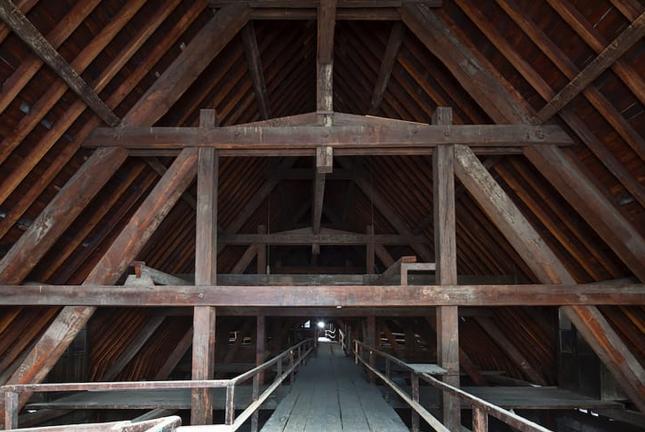 Οι κορμοί βαλανιδιάς που υποστηρίζουν την οροφή της Παναγίας των Παρισίων είναι ηλικίας αρκετών αιώνων.