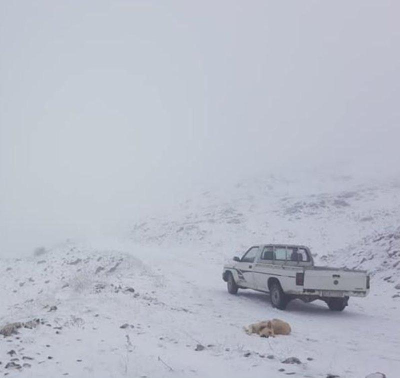 Ενα αγροτικό όχημα πάνω στο χιόνι, στο χωριό Συρράκο