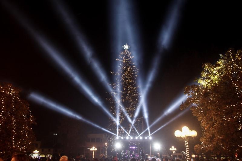 Προβολείς σε χριστουγεννιάτικο δέντρο