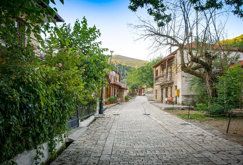Δρόμος στη Ζαρούχλα