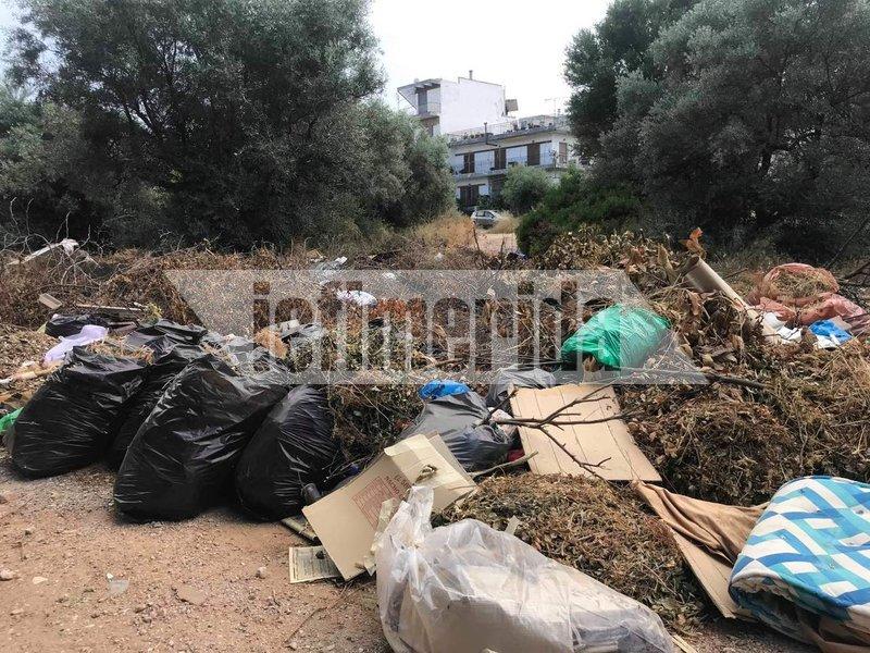 Τόνοι σκουπιδιών, μπάζα και ξερά κλαδιά στο Ζούμπερι, στο βάθος σπίτια και οι κάτοικοι τρέμουν μην ξεσπάσει φωτιά
