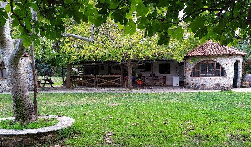 Διαφορετική βόλτα: 5 αγροκτήματα μια ανάσα από την Αθήνα -Φοβερό φαγητό και  χαλάρωση στη φύση -Φυτεύεις, παίζεις με ζώα   ΠΟΛΗ   iefimerida.gr