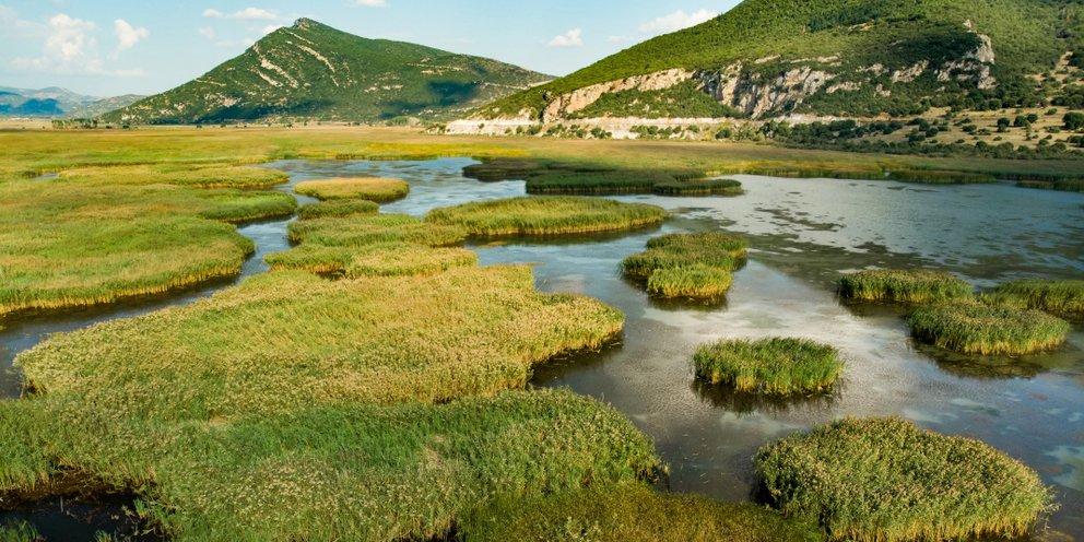Η μυθική ομορφιά της αινιγματικής λίμνης Στυμφαλίας -Mε κουρτίνες ομίχλης  και σπάνια πτηνά [εικόνες] | TRAVEL | iefimerida.gr